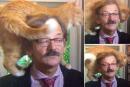 قط يخطف الأنظار من عالم سياسي خلال مقابلة تليفزيونية