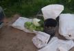 النقب: اعتقال مشتبهين من شقيب السلام بشبهة سرقة محاصيل زراعية
