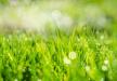 الطقس: أبرد فصل ربيع منذ 22 سنة
