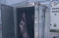 كفر مندا: الشرطة تضبط 5 أطنان من اللحوم بحجة عدم الصلاحية