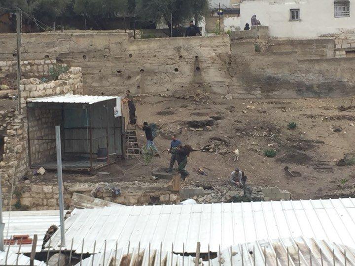 سلوان: الاحتلال يصادر مخزنا ويهدم بركسا للمواشي