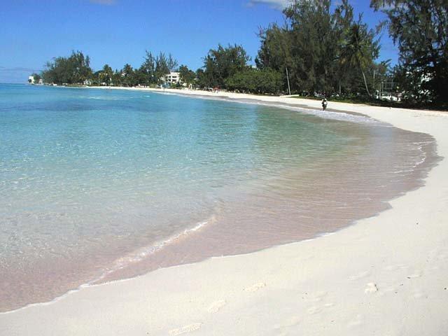 """تعرفوا على جزيرة """"باربادوس"""" حيث تحلو السباحة في الشتاء 1855060177"""