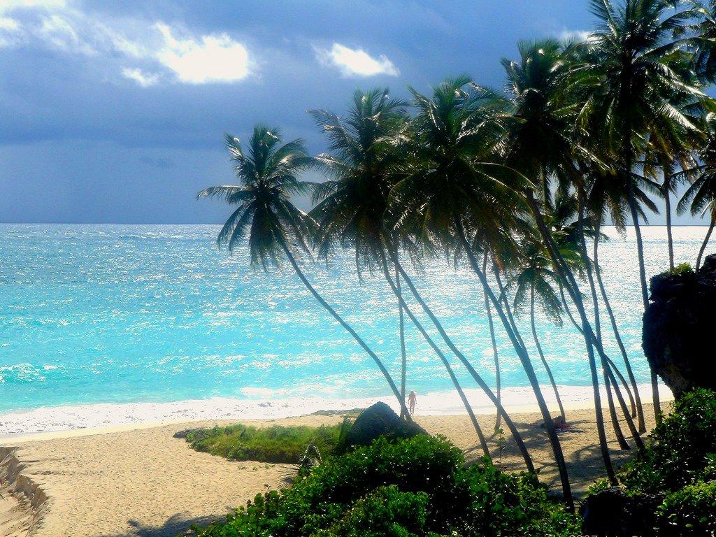 """تعرفوا على جزيرة """"باربادوس"""" حيث تحلو السباحة في الشتاء 2079431675"""