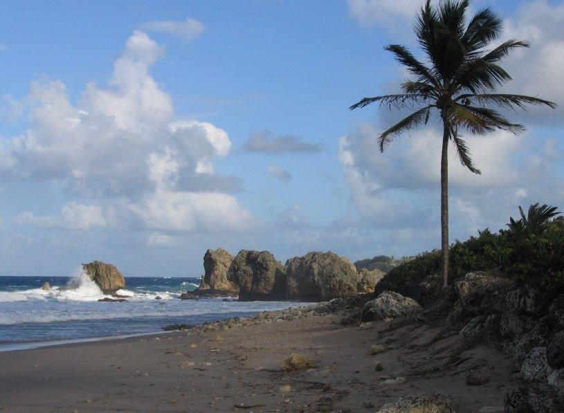 """تعرفوا على جزيرة """"باربادوس"""" حيث تحلو السباحة في الشتاء 2123834522"""