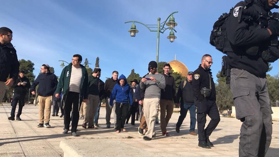 الاحتلال كثّف من اعتقالاته اليومية واقتحاماته للأحياء المقدسية وهدم المنشآت الشهر الماضي