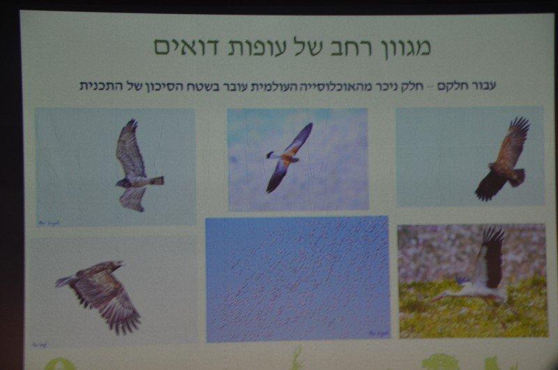 جمعيَّة حماية الطّبيعة: من وادي حلزون إلى محاضرات في مجال حماية البيئة