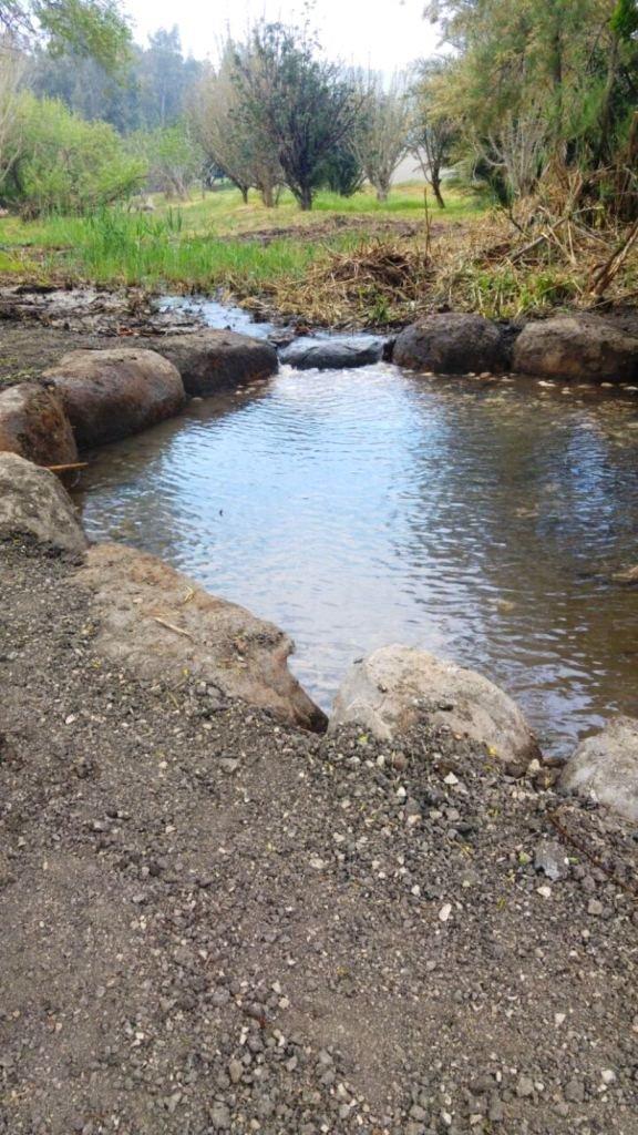 الجلبوع: إعادة إحياء وادي نفوت في الجلبوع وتحويله لحديقة عامة للاستجمام