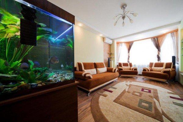 صور: أسماك الزينة في الديكور الداخلي