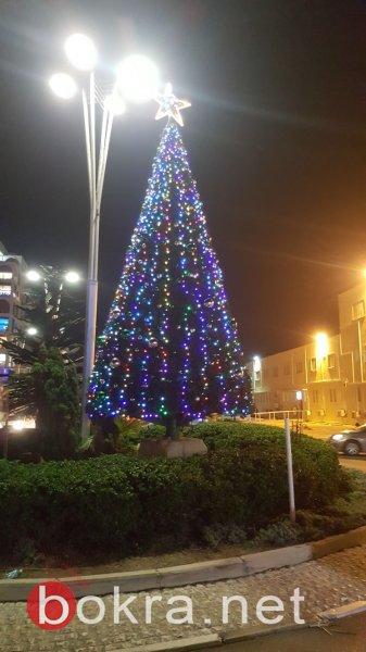 عكا تضيء شجرة الميلاد وسط أجواء مميزة