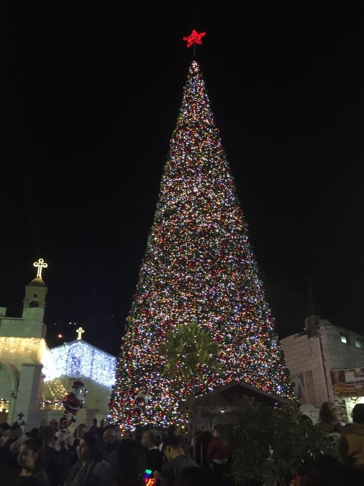 عفاف توما: إضاءة الشجرة بالناصرة باتَ حدثًا عالميًا، وبرغم الظروف أردنا إفراح الأطفال