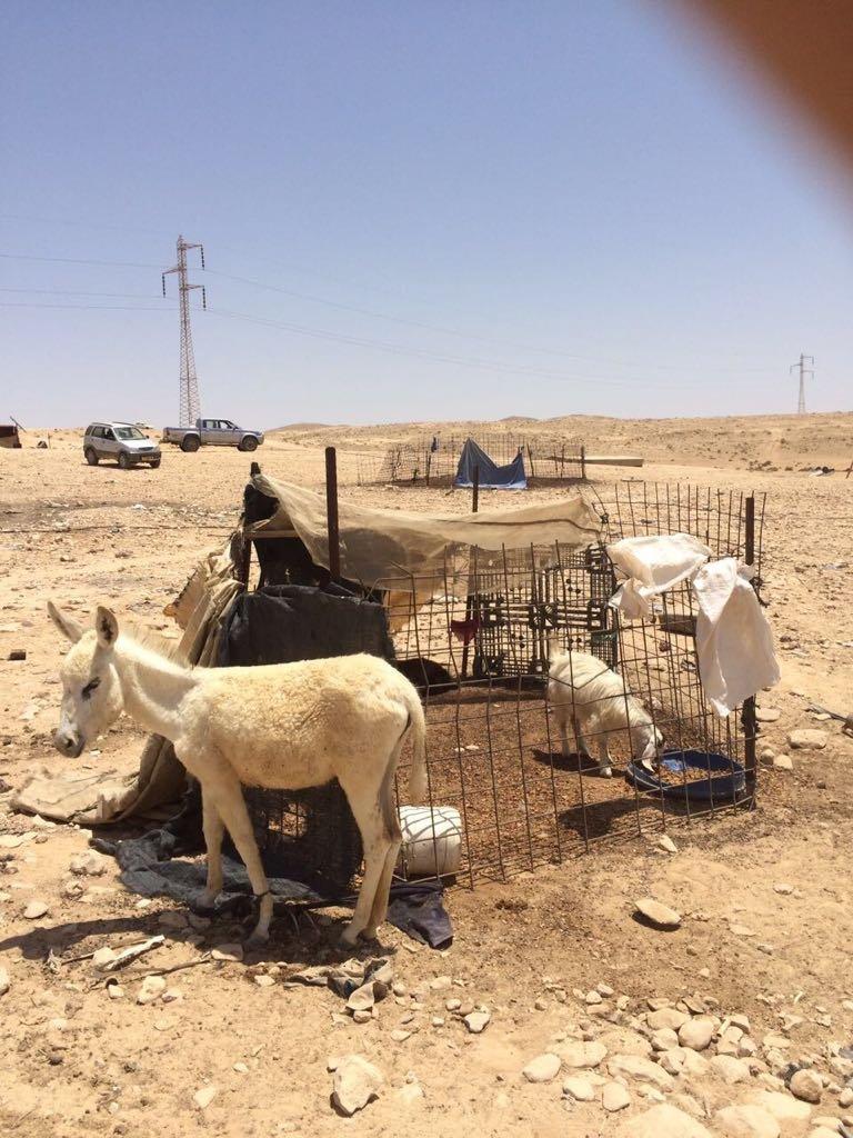 النائب طلب ابو عرار يطالب وزير الزراعة بوقف هدم البيوت في رخمه وعقد جلسة مع الاهل بخصوص الاعتراف.