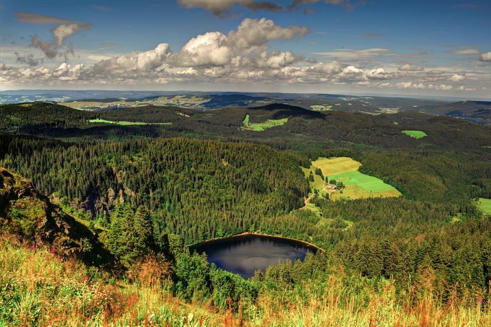 """""""الغابة السوداء"""" وجهة سياحية ألمانية تجذب المغامرين 1002252257"""