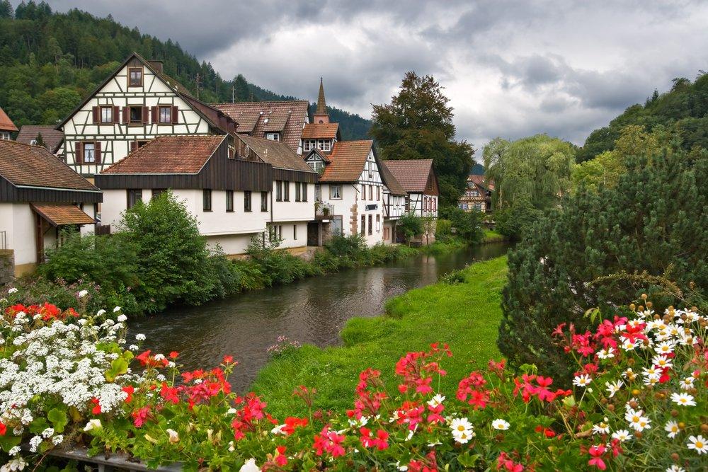 """""""الغابة السوداء"""" وجهة سياحية ألمانية تجذب المغامرين 1920496265"""
