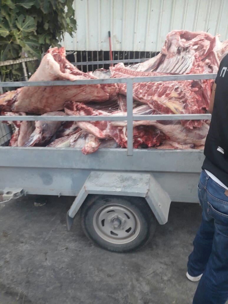 وزارة الزراعة: لم يتم ضبط لحوم حمير في طمرة