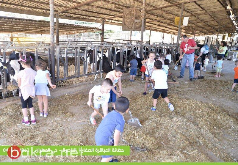 حضانة وروضة العباقرة الصّغار – الناصرة، في رحلة لـدرب البقرات