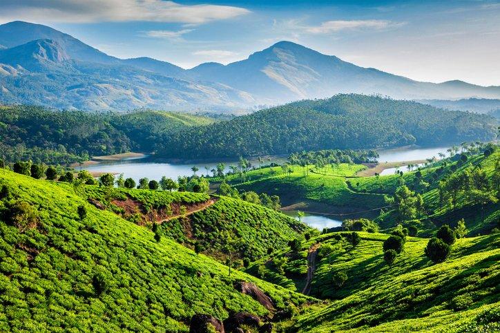 تعرفوا على ولاية كيرالا، الهندية.. متعة السفر بين احضان الطبيعة