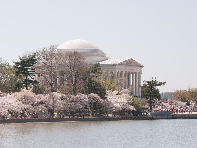عناوين سياحية في واشنطن دي سي بعيدة عن ناطحات السحاب