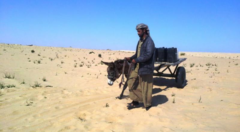 مصر.. آلاف الإسرائيليين يتوافدون على سيناء رغم التحذيرات الأمنية