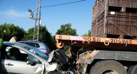 منذ مطلع العام: ربع قتلى الشوارع سقطوا في حوادث شاحنات