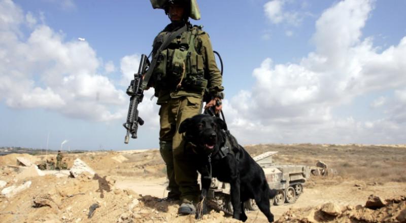 إسرائيل تفقد طائرة بلا طيار في قطاع غزة