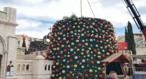 الناصرة: تركيب شجرة الميلاد- الروم .. أكبر شجرة ميلاد في البلاد