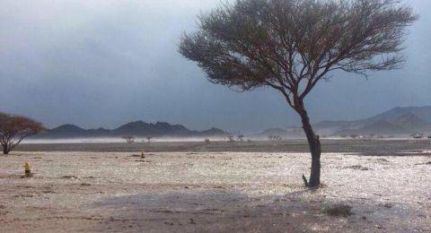 حالة الطقس: توقعات بقدوم  منخفض جوي