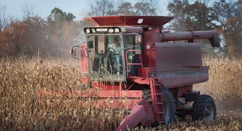 القطاع الزراعي يتسبب بتلوثات أكبر من المصانع والسيارات!