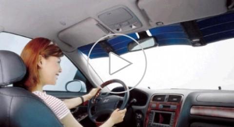 نسبة تورط النساء بحوادث الطرق بالمدن  لا تتجاوز الـ 25%