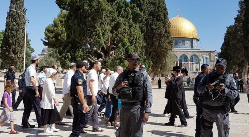 90 مستوطنًا وطالبًا يهوديًا يقتحمون الأقصى