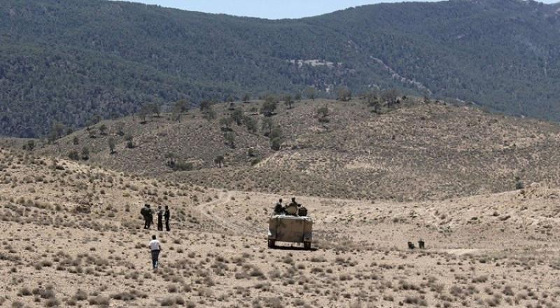 بعد قطع رأس شقيقه.. مجموعة إرهابية تقتل راعي غنم وسط تونس