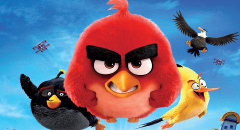 طيور الغاضبة مدبلج Angry Birds