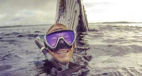 استرالي يلتقط سيلفى مع حوت ضخم في عرض البحر