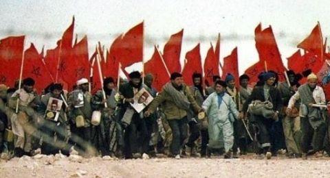 المغرب: ذكرى المسيرة الخضراء.. 43 عاما من الحرب والانتظار