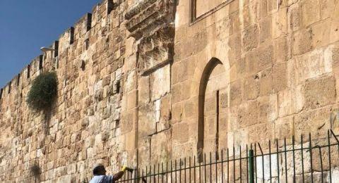 الاحتلال يعتقل 5 مقدسيين تصدّوا لاعتداء مستوطنين على مقبرة إسلامية