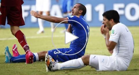 أطرف 10 مواقف في كأس العالم 2014