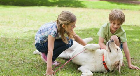 حيواناتك الأليفة تُحسن صحتك العقلية