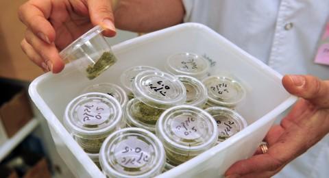 ازدياد ملحوظ في استعمال مخدّر