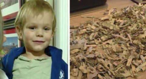 طفل يضع 1000 دولار في آلة تمزيق الورق