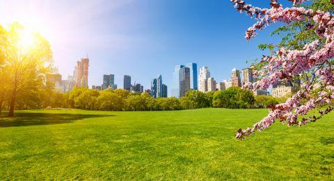 الطقس: أجواء غائمة جزئيا والحرارة حول معدلها السنوي