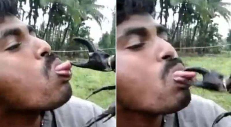 هندي يتباهى أمام أصدقائه بوضع لسانه بين مقص السلطعون