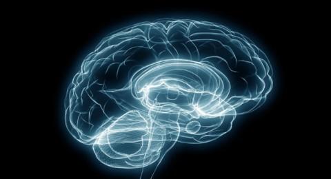 التوتر النفسي يسرع في شيخوخة الدماغ