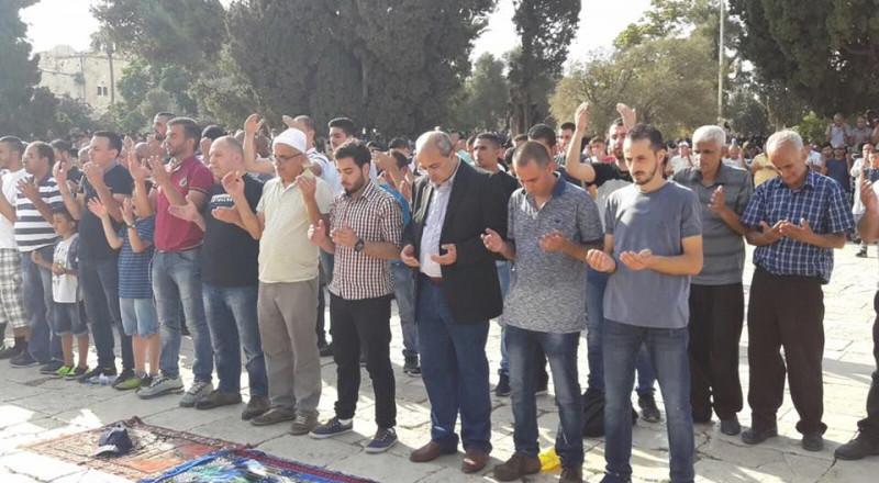 الوزير أردان يُقدّم شكوى ضد الطيبي لدخوله المسجد الأقصى خلال المواجهات