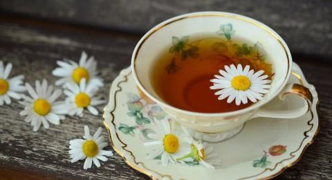 خمسة اقداح من الشاي يوميا تقي من الأمراض وتحسن المزاج