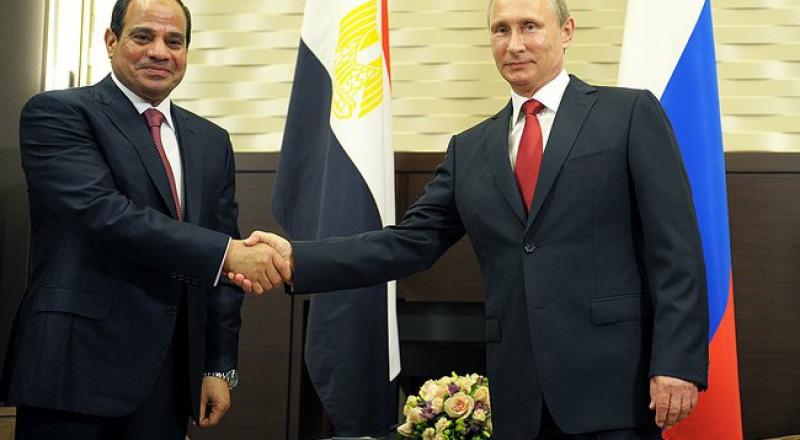 الكشف عن موقف القاهرة من الأسد