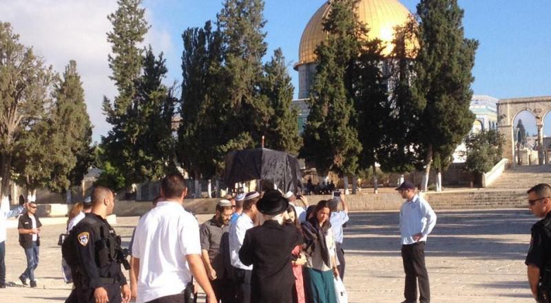 المستوطنون يستأنفون اقتحاماتهم الاستفزازية لباحات المسجد الأقصى