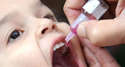 الأحد (18/8) تبدأ الحملة الشاملة للتطعيم ضد