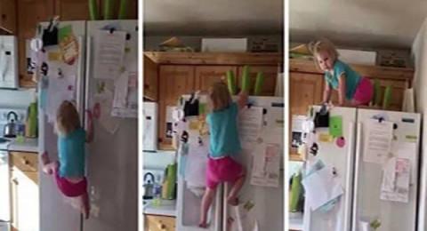 طفلة مشاغبة تتسلق ثلاجة كالسحلية !