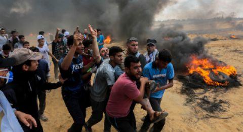 سفيرة إسرائيل في بلجيكا: كل القتلى الفلسطينيين إرهابيون