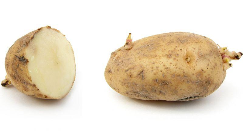لمحبي البطاطا.. اقرأوا هذا الخبر