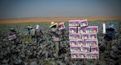 الاردن: مطالبات بمقاطعة منتجات زراعية إسرائيلية